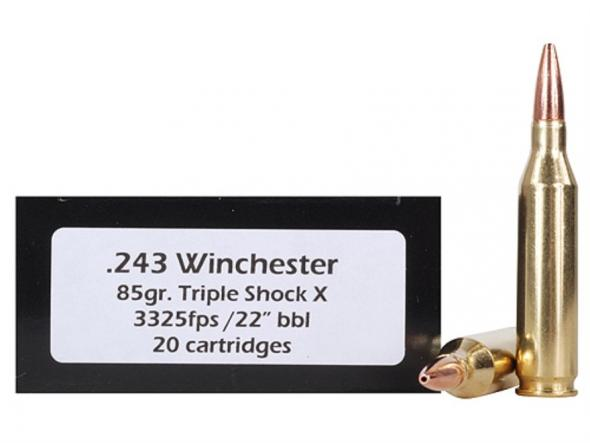 Doubletap Ammunition 243 Winchester 85 Grain Barnes Triple-Shock X Bullet  Hollow Point Lead-Free Box of 20